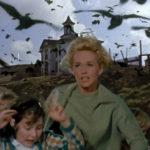 """KAO U HORORU """"PTICE"""", ZALEĆU SE NA ŽENE I DECU: Učestali napadi vrana, lekari ne pamte toliko teške povrede"""