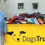 ENGLESKA: Baka isplela 450 ćebića i džempera za pse iz azila