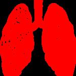 ASTMA I HRONIČNI BRONHITIS: Imate li većeg razloga za brigu