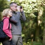 IDEALAN HOBI ZA STARIJE: Evo kako da postanete dobar posmatrač ptica!